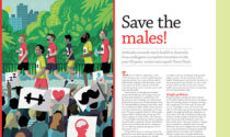 Save the males!